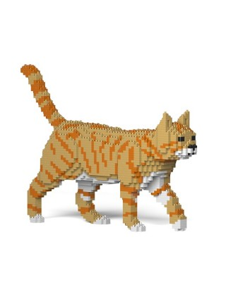 Orange Tabby Cats (6)
