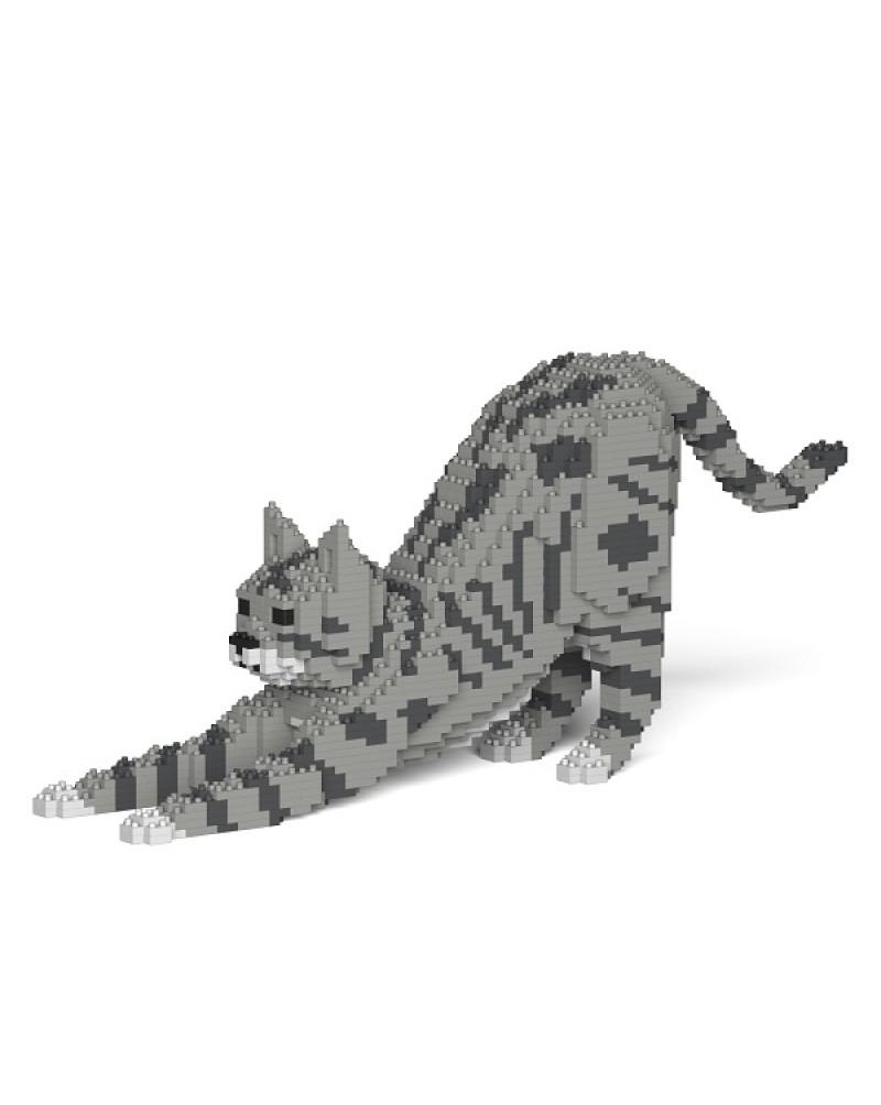 Cat 05S-M03