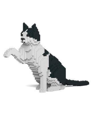 Black & White Cats (6)