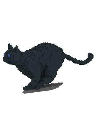 Black Cats (6)