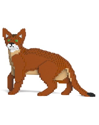 Abyssinian Cats (4)