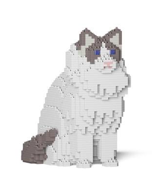 Ragdoll Cats (12)