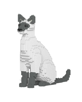 Siamese Cats (6)