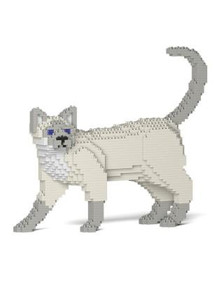 Tonkinese Cats (6)