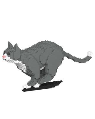 Grey Tuxedo Cats