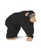 Chimpanzee 02C
