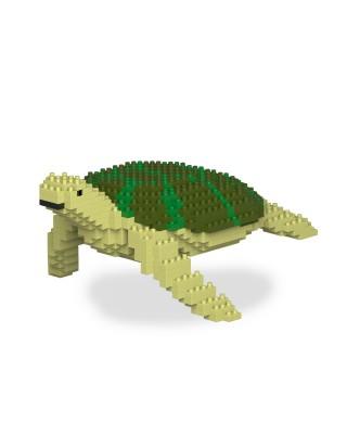 Turtle & Tortoise