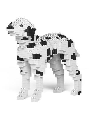 Dalmatian (2)