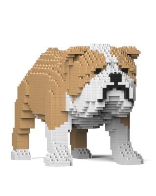 English Bulldog (8)
