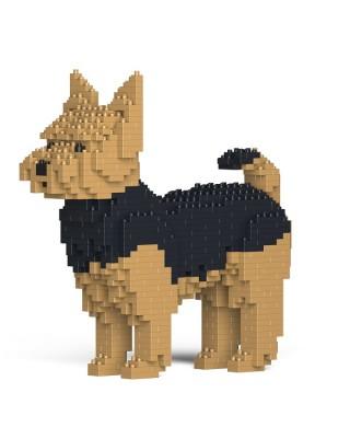 Yorkshire Terrier (1)