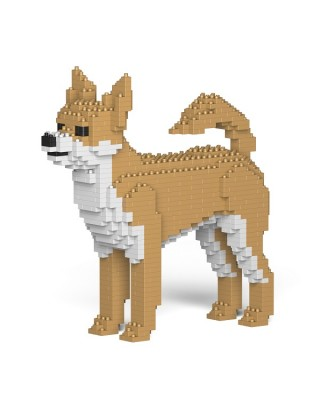 Chihuahua (8)