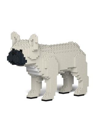 French Bulldog  (22)