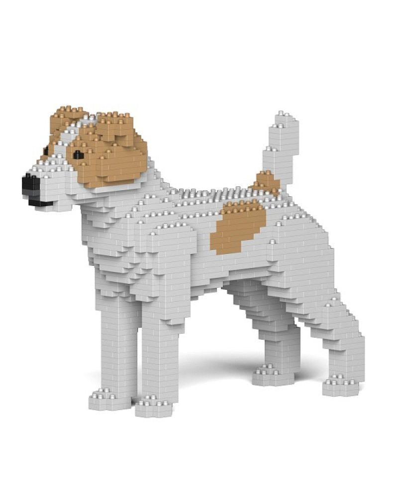 Jack Russell Terrier 01S-M03