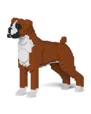 Boxer (6)