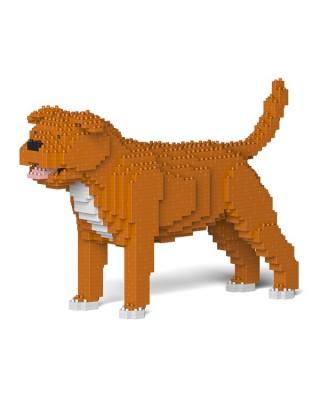 Staffordshire Bull Terrier (8)