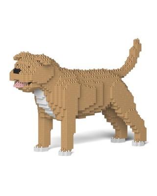 Staffordshire Bull Terrier (4)