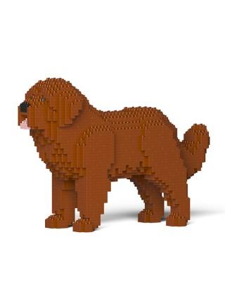Newfoundland Dog (6)