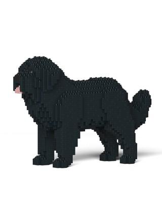 Newfoundland Dog (3)
