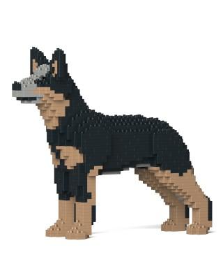 Australian Cattle Dog (2)