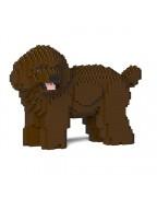 Toy Poodle 05S-M05