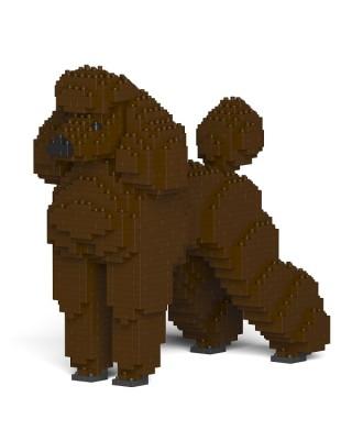 Standard Poodle (12)