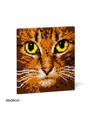 Cat Eyes Brick Paintings