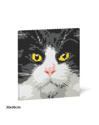 Tuxedo Cat Brick Paintings